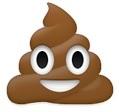 Poo happy